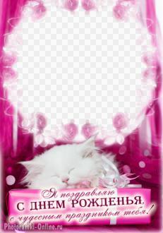 рамка День рождения котенок